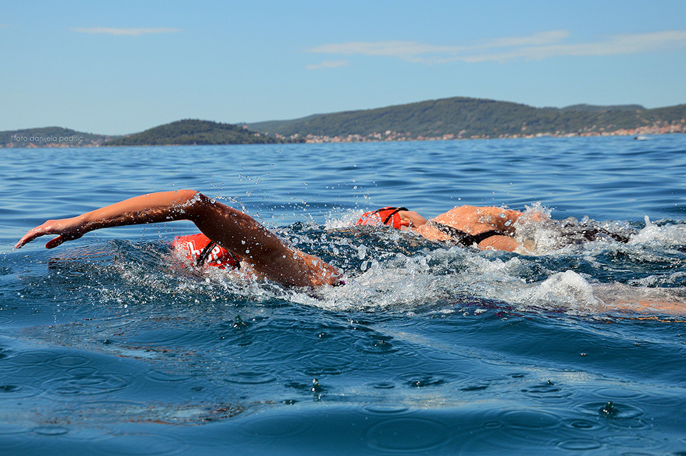 sea organ swim zadar outdoor festival 2019